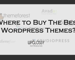 buy-best-wordpress-themes