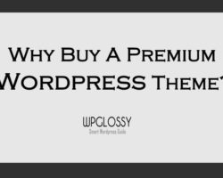 why-premium-wordpress-theme