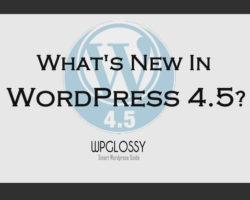 features-of-wordpress-4.5