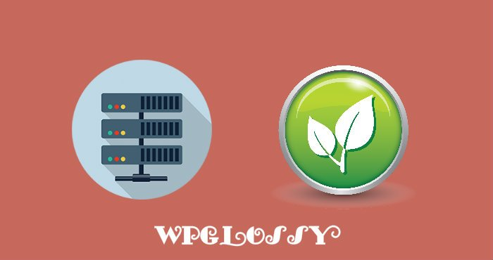 best-green-web-hosting-companies