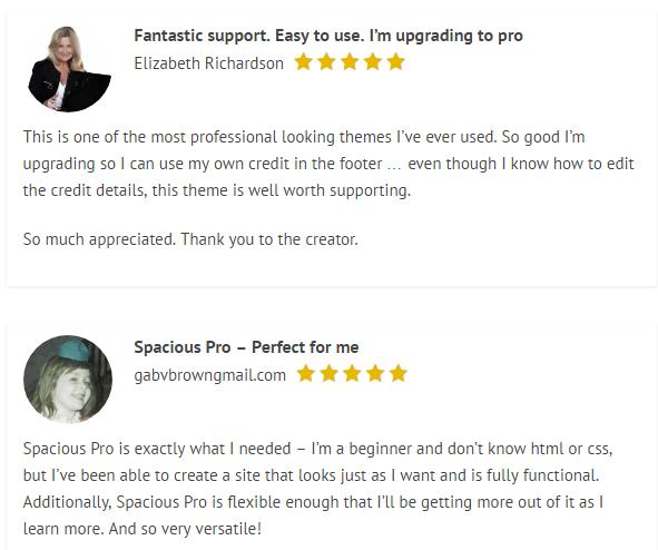reviews-spacious-theme