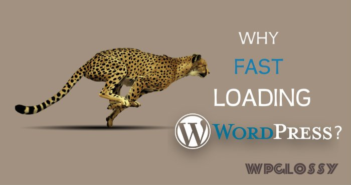 why-fast-loading-site
