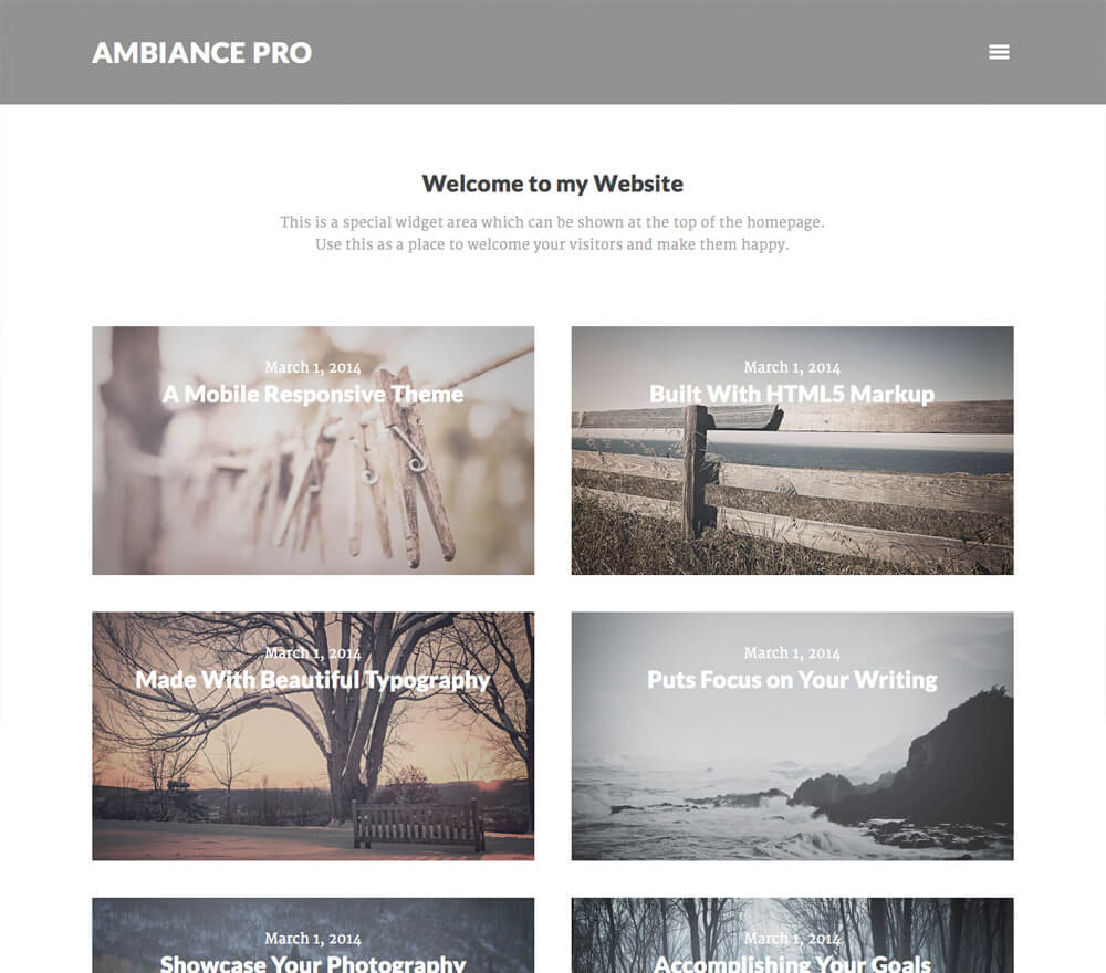 20 3 Excellent Genesis Child Themes For Every Wordpress Site